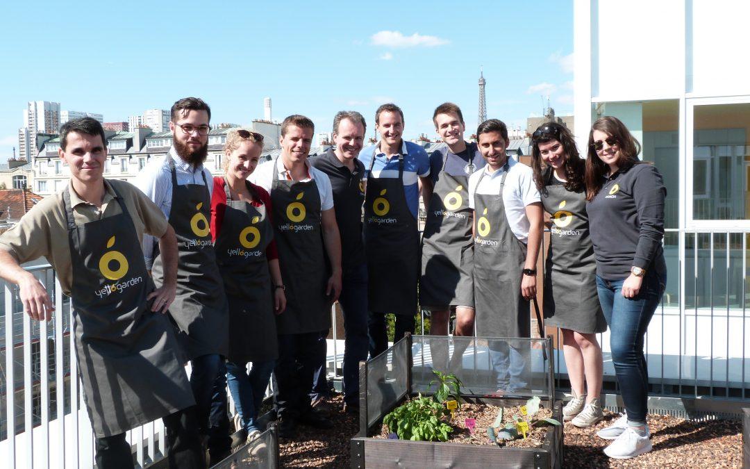 Plantation des potagers Yellow Garden sur les toits de Boucicaut