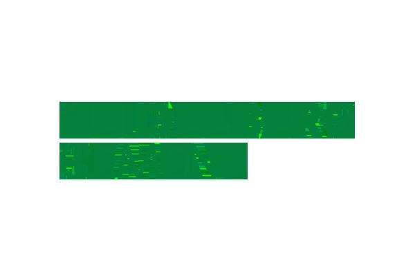 Heidelberg Cement