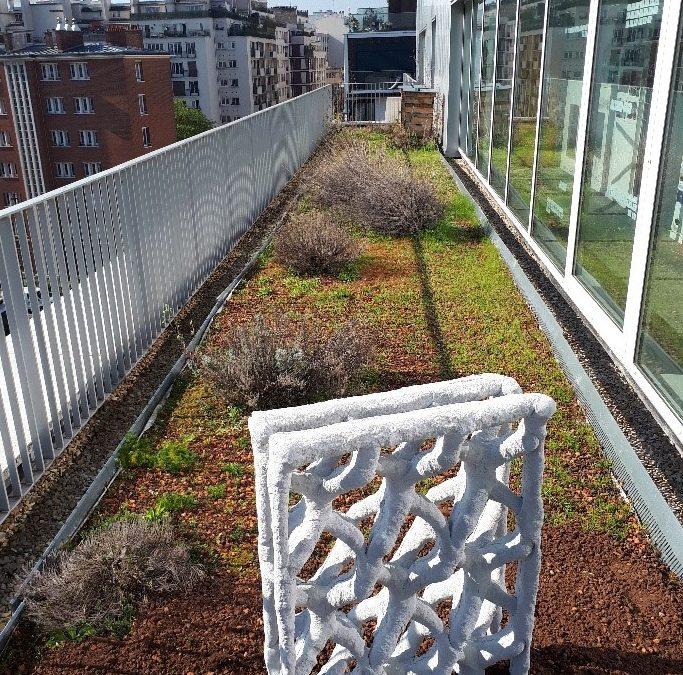Installation du prototype Soliquid sur la terrasse de l'incubateur Boucicaut