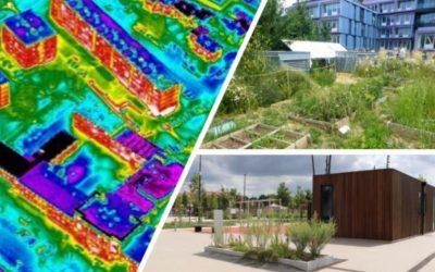 Combating urban heat islands