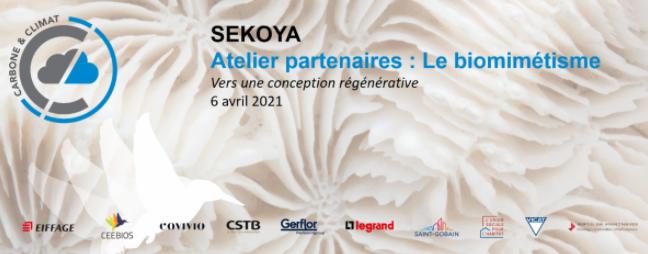 SEKOYA's workshop on biomimicry